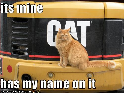 funny-pictures-your-cat-owns-a-large-truck