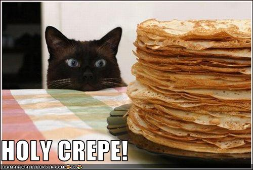 funny-pictures-cat-looks-at-a-huge-stack-of-crepes